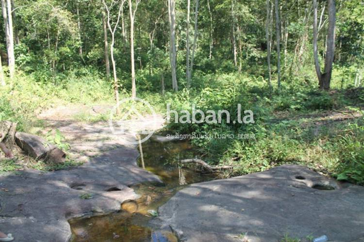 residential Land/Development for sale in Naxaithong ID 5387 1