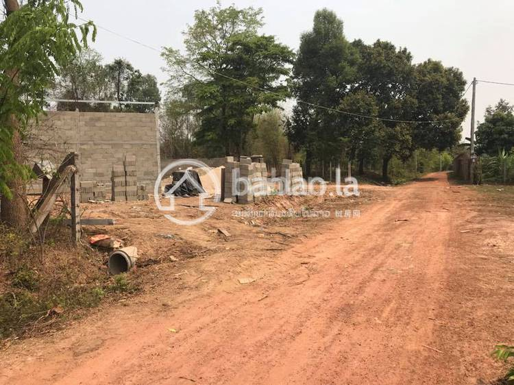 residential CommercialLand for sale in ບ້ານດ່ານຊ້າງ ID 2423 1