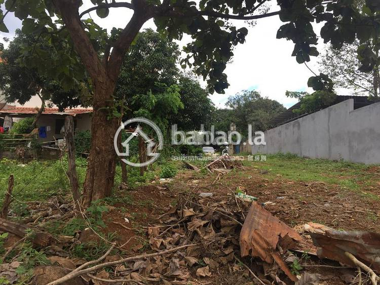 residential Land/Development for sale in ຈັກສັນ ID 2573 1