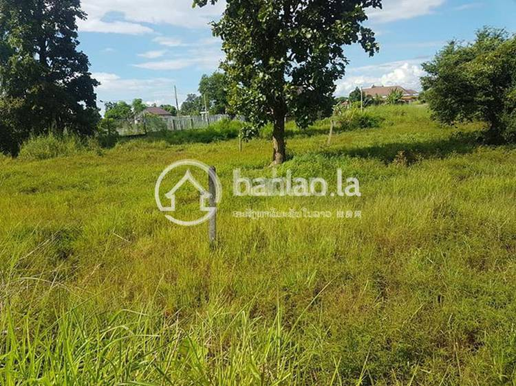 residential Land/Development for sale in ບ້ານ ດອນໜູນ ID 2602 1