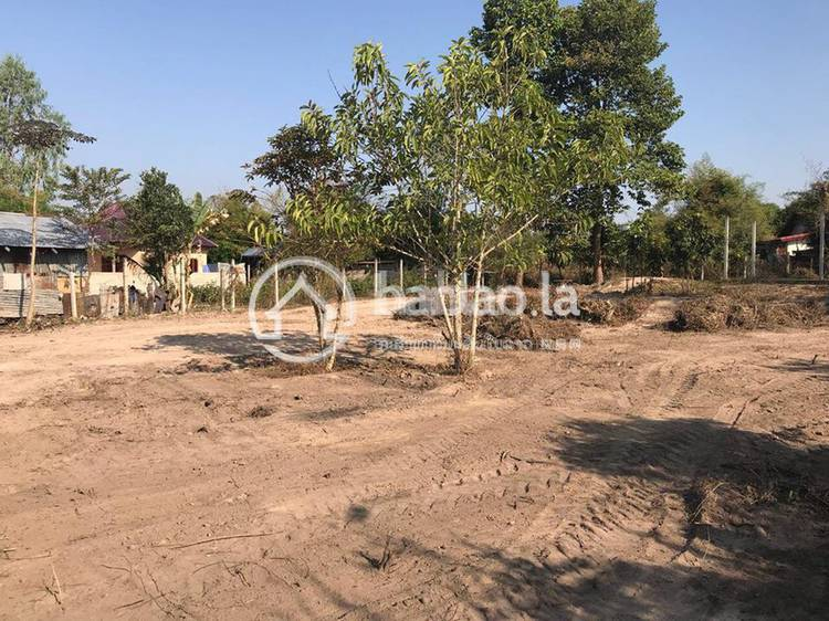 residential Land/Development for sale in ບ້ານ ນາໄຫ ID 2680 1