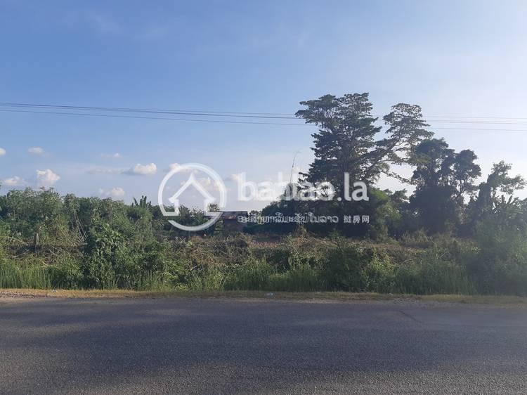 residential Land/Development for sale in ບ້ານຍອຍໄຮ ID 2966 1