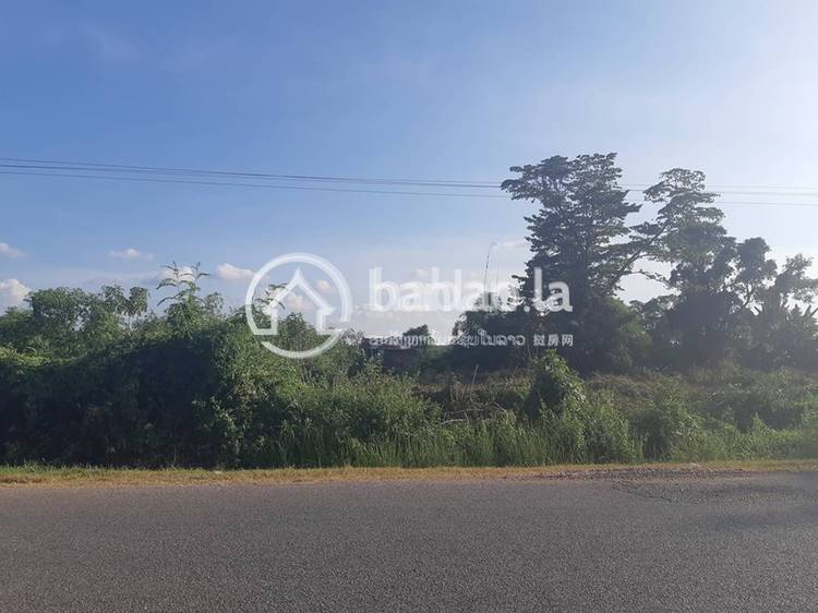 residential Land/Development for sale in ຍອນໄຮ ID 2973 1