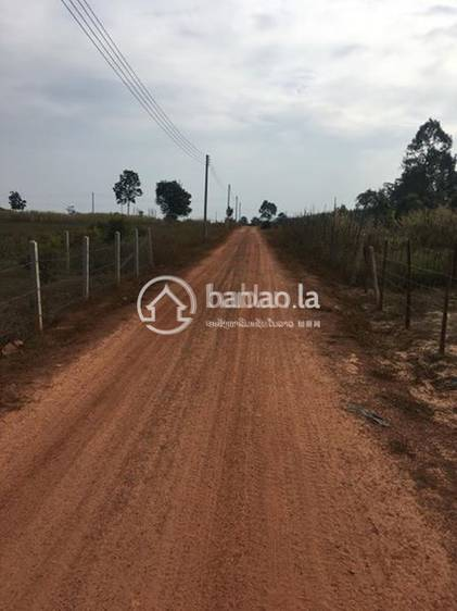 residential Land/Development for sale in ຫົວຂົວ ID 2987 1