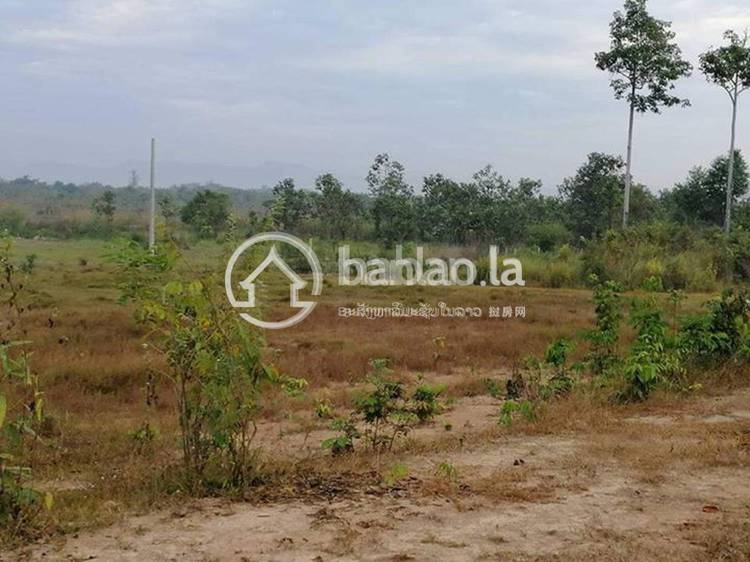 residential Land/Development for sale in ໂພນໄຮ ID 3082 1