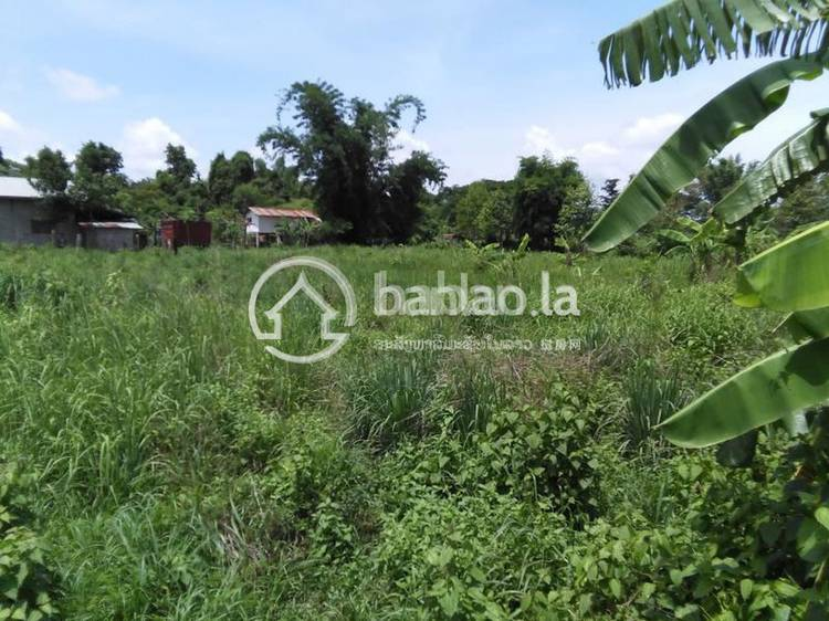 residential Land/Development for sale in ປາກງື່ມ ID 3230 1