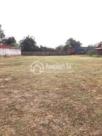 residential Land/Development for sale in ໜອງພະຍາ ID 3256 1