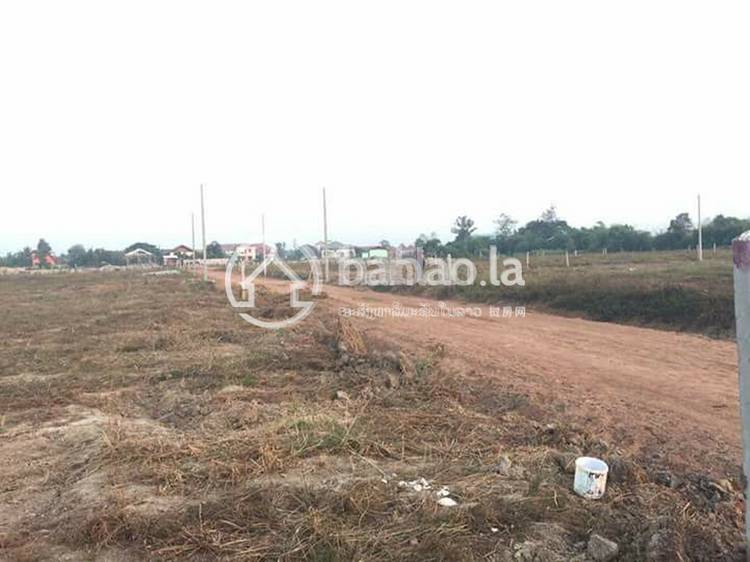 residential Land/Development for sale in ດອນໜູນ ID 3265 1