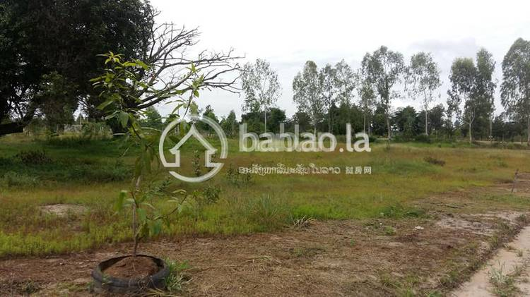residential Land/Development for sale in ຄູນນ້ອຍ ID 3543 1
