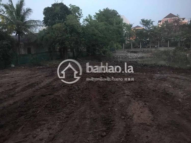 residential Land/Development for sale in ສາຍນ້ຳເງິນ ID 4007 1