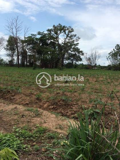 commercial Land/Development for sale in ໜອງເຂັງ ID 4569 1