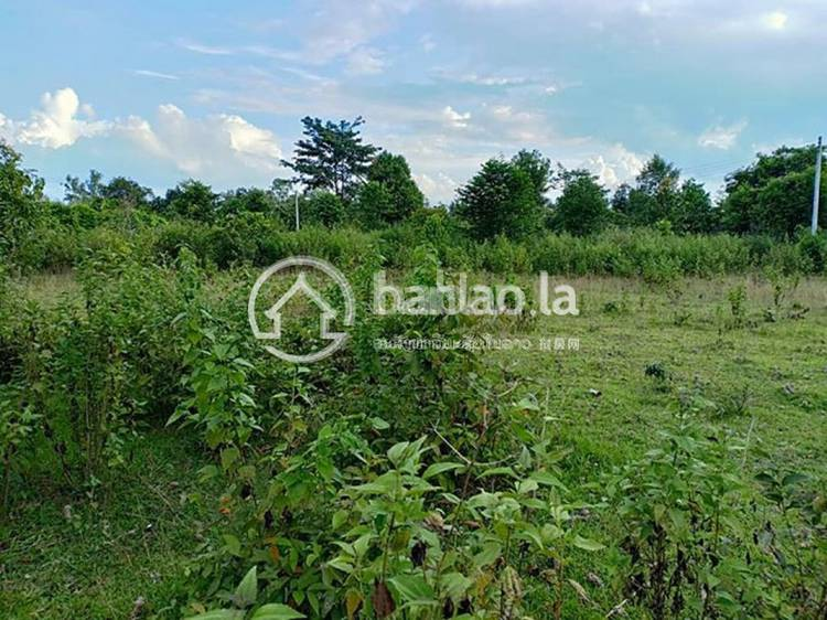 commercial Land/Development for sale in ແສນອຸດົມ ID 4610 1
