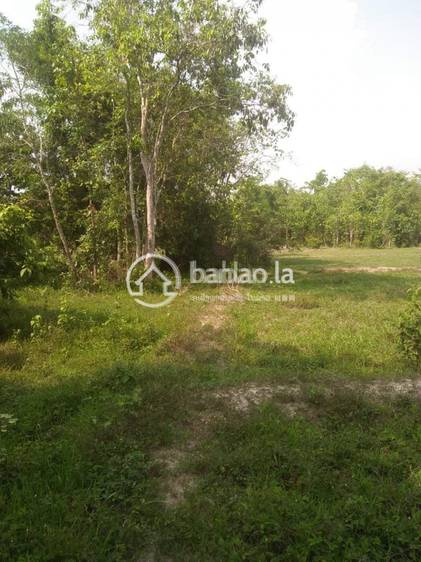 commercial Land/Development for sale in ໂພນສະຫວັນ ID 4653 1