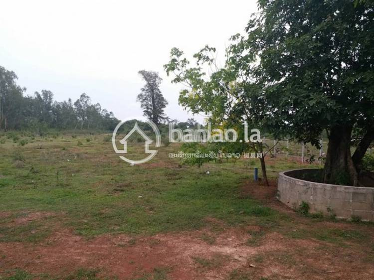 commercial Land/Development for sale in ບ້ານ ບໍ່ເຫຼັກ ID 4705 1