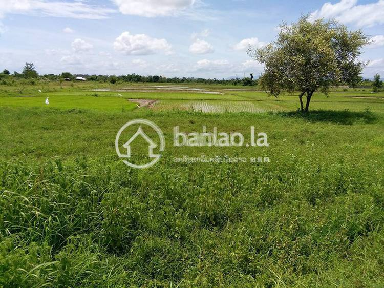 residential Land/Development for sale in ບ້ານ ໂຄກໃຫຍ່ ID 2631 1