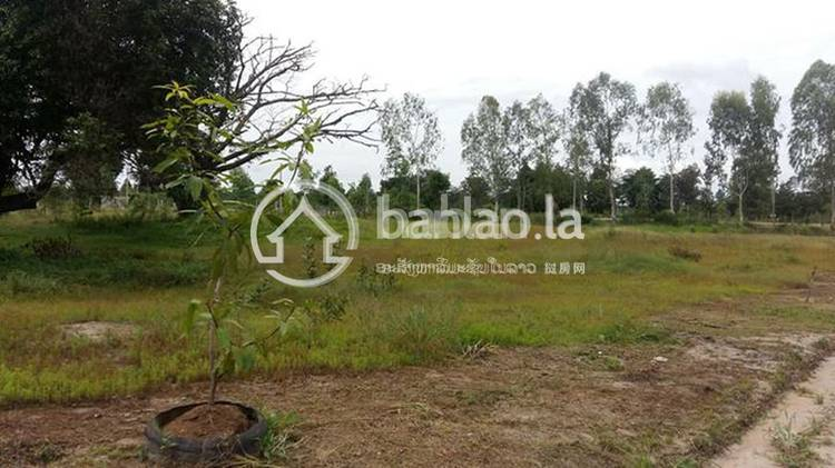 residential Land/Development for sale in ນາຄູນນ້ອຍ ID 3040 1