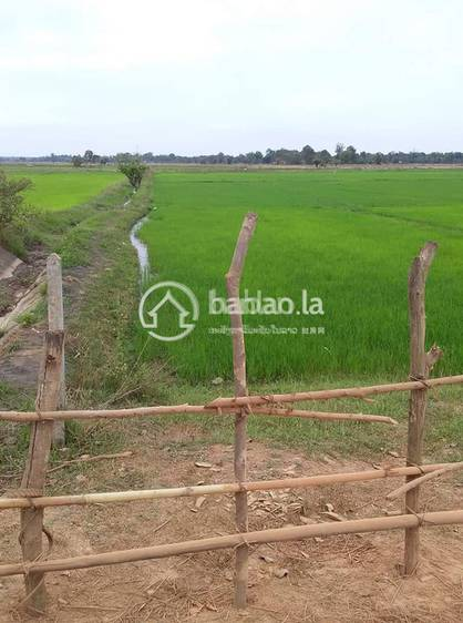 residential Land/Development for sale in ບ້ານ ທ່າພະເມືອງ ID 3384 1