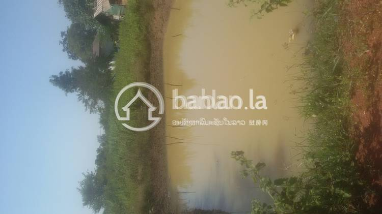 residential Land/Development for sale in ໂຊກໃຫ່ຍ ID 3447 1