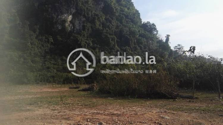 commercial CommercialLand for sale in ບ້ານໂພນເງິນ ID 4559 1