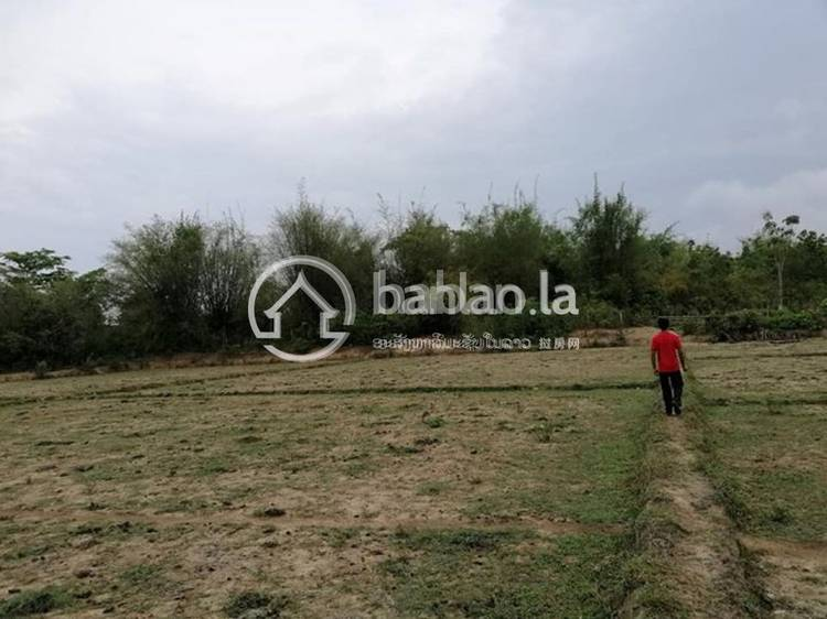 commercial Land/Development for sale in ເພຍລາດ ID 4627 1